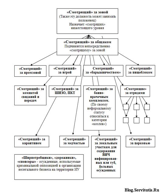 Структура криминальной оппозиции уголовно-исполнительной системы России