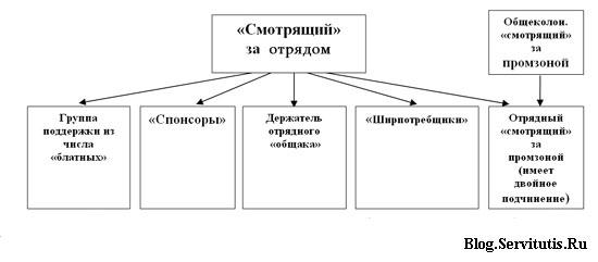 структура организации криминальной оппозиции отрядного звена действующей в СИЗО России